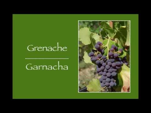 wine article Winecast Grenache