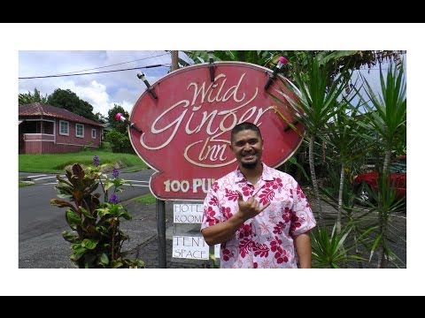 cheap-hotel-hostel-in-hawaii-wild-ginger-inn-hotel-&-hostel,-hilo,-big-island-hawaii