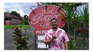 Cheap Hotel Hostel in Hawaii Wild Ginger Inn Hotel & Hostel, Hilo, Big Island Hawaii