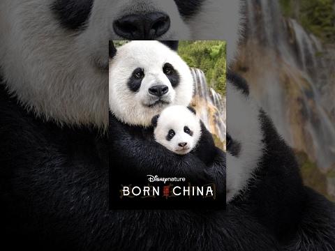 Disneynature: Born in China