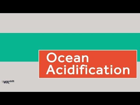 Climate Indicators: Ocean Acidification