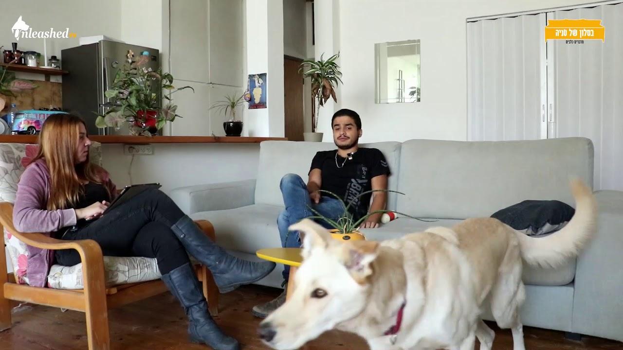 בסלון של טניה פרק 11 - חילוץ כלבים