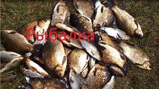 хорошая рыбалка в июле