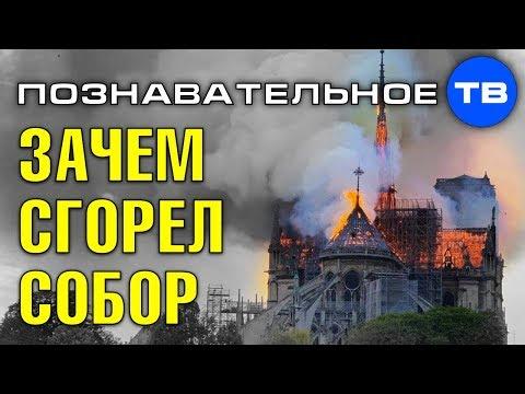 Зачем сожгли собор Парижской богоматери? (Познавательное ТВ, Артём Войтенков)