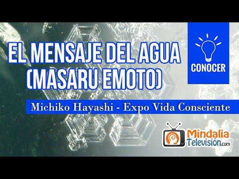 El mensaje del agua (Masaru Emoto), Entrevista a Michiko Hayashi - Expo Vida Consciente