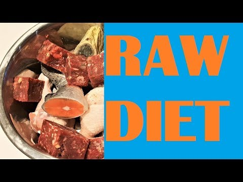 Top Raw Feeds! BARF Biologically Appropriate Raw Food vs Prey Model PMR