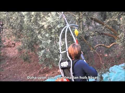Zeytin Silkeleme Makinası Salıncak Askı