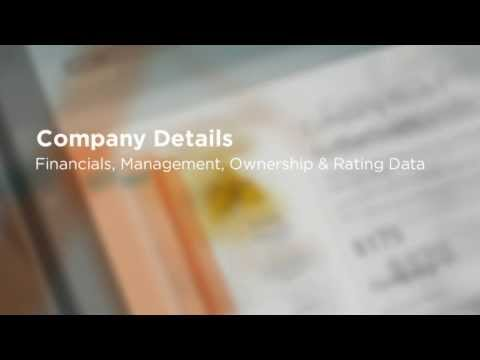 Netherlands - Company Credit Report & Background Information