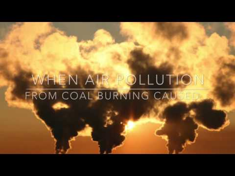 Industrial Revolution and the Environmental Impact- Trinity