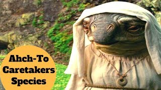 The LANAI Species - Ahch-To Caretakers Species - Star Wars The Last Jedi Species Explained