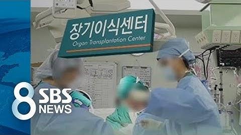 """""""이 꼴 보자고 아들 시신을""""…후회만 남긴 장기기증 / SBS"""