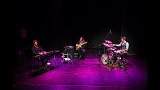 Daniel Bagutti Trio Interweave Promo
