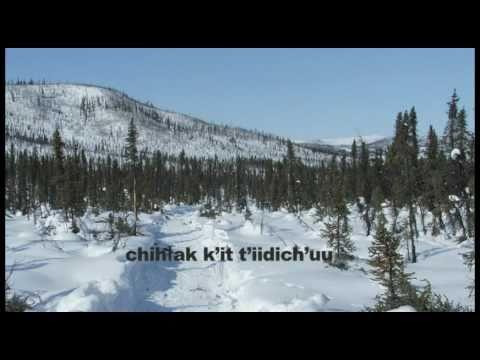 Caribou, Our Livelihood - gwichin subtitles