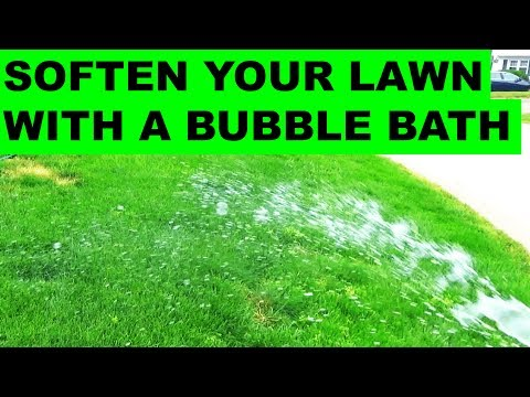 Soften your Lawn with Yucaa and Soap