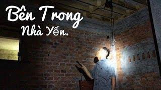 Download Video Tham Quan Bên Trong Nhà Yến | Tôi Yêu Chim Yến MP3 3GP MP4