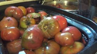 Juicing fresh tomatoes to freeze