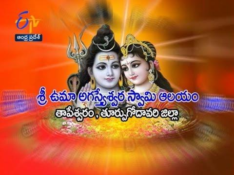 Teerthayatra - Sri Uma Agastheswara Swamy temple Tapeswaram (E.G.)18th April 2016 - తీర్థయాత్ర –