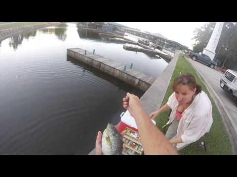 Good Day Fishing Lake Conroe Texas
