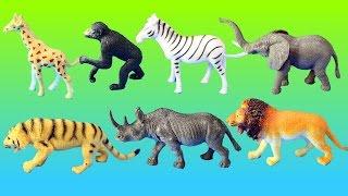 Toy Wild Zoo Animals Collection Set - Lion Tiger Elephant Zebra │ Animal Toys For Children