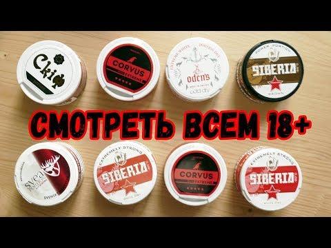 САМЫЕ ПОПУЛЯРНЫЕ СНЮСЫ В РОССИИ