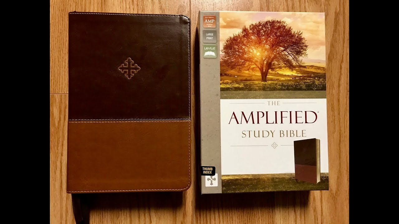 Amplified Study Bible Large Print Review