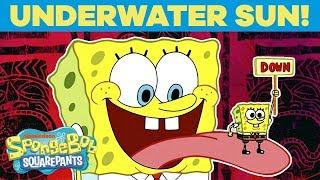 Underwater Sun! ☀️ #TuesdayTunes