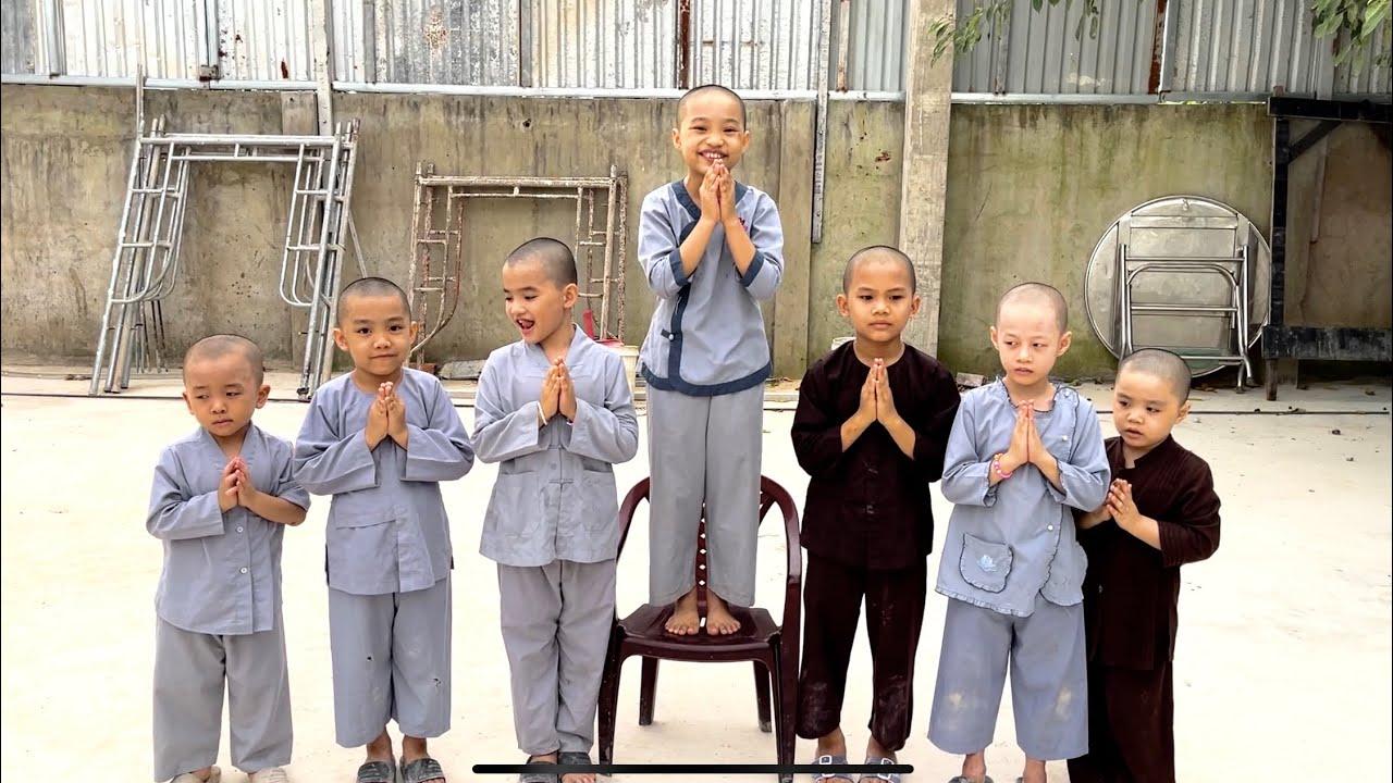 5 Chú Tiểu | ĐANG NGHE ĐỨC TÂM GIÀ CHUYỆN THÌ BẤT NGỜ NGHI TÂM BIỂU DIỄN ĐỌC TCTLN  TỐC ĐỘ ÁNH SÁNG!