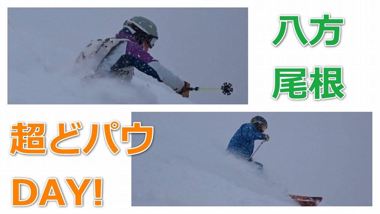 シーズンベストの粉雪パウダーDAY!【八方尾根・ゲレンデリポート】