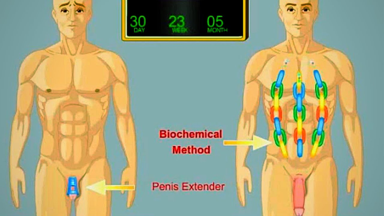 Size for penis exercises All Penis