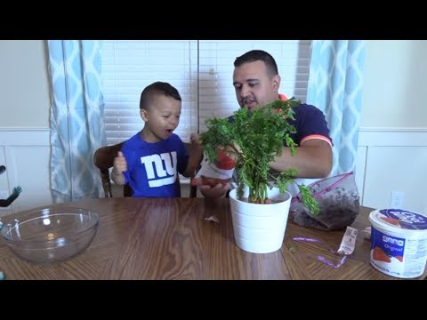 ANTHONY EATS MUD?! DIRTY MUDDY PRANK! BOY RUINS MOMS NEW PLANT! | DINGLE HOPPERZ