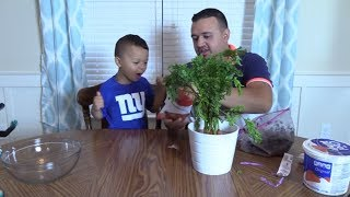 FUNNY SURPRISE FOR MOM! BOY CHANGES NEW PLANT! | DINGLEHOPPERZ VLOG
