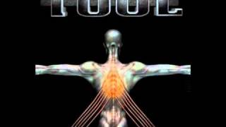 Tool - Message to Harry Manback II (Salival)