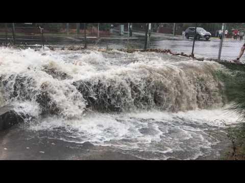 Elster Creek flooding in Brighton East 29/12/2016 1