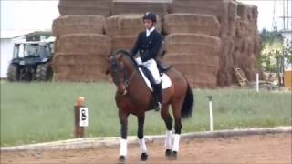 San escuela jorge equitación de