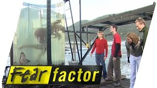 Crayfish Tank  | Fear Factor Extra