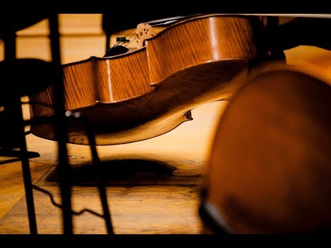 Beethoven: Symphony no 1 - Dima Slobodeniouk - Sinfónica de Galicia
