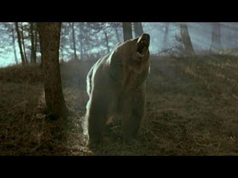 Deception in Animal Documentaries