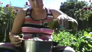 Vegan And Gluten Free Vegan Roasted Potatoes And Organic Sweet Potato Salad:part 3