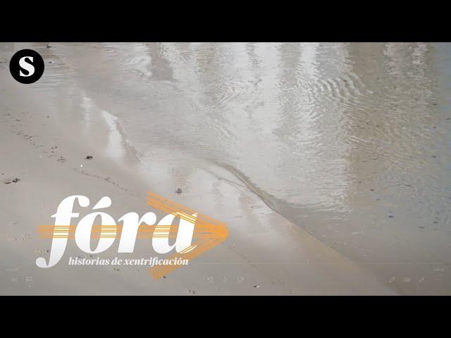 FÓRA | SOS Panadeira