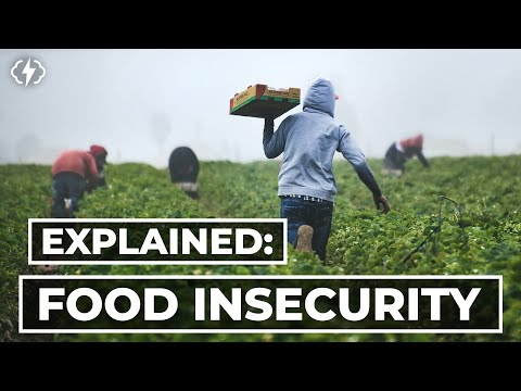 The Truth About Food Insecurity