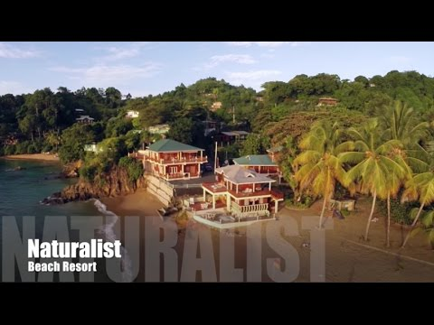 Castara Naturalist Beach Resort, Tobago