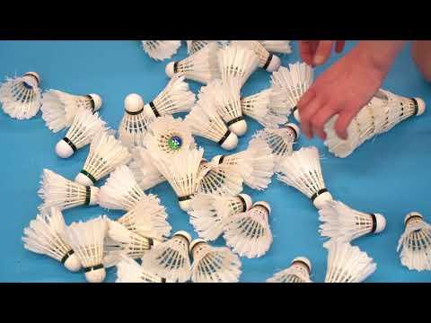 OFFSIDE - Badminton Associatif Choletais