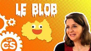 Le Blob, une étrange créature -  Les chroniques de la Science