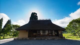 【新曲】『オリーブの島』 _石川さゆり cover: てるちゃん