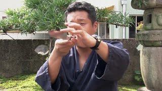 видео самура ножи