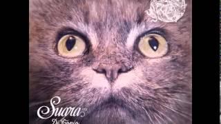 DJ Tonio - Follow Me (Original Mix) [Suara]
