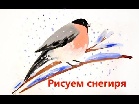 Лоток для рассады цена, где купить в Беларуси