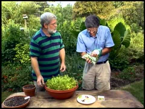 Walter Reeves - Southern Gardening