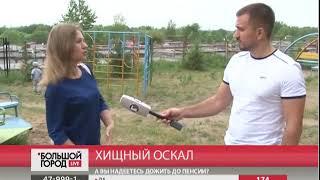 Свора собак угрожает жителям южного района в Хабаровске. Большой город. live. 18/06/2018. GuberniaTV