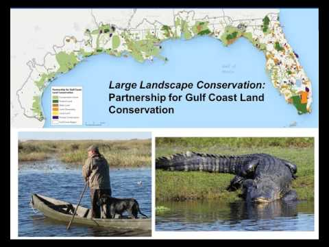 Large Landscape Conservation: Partnering with Land Trusts